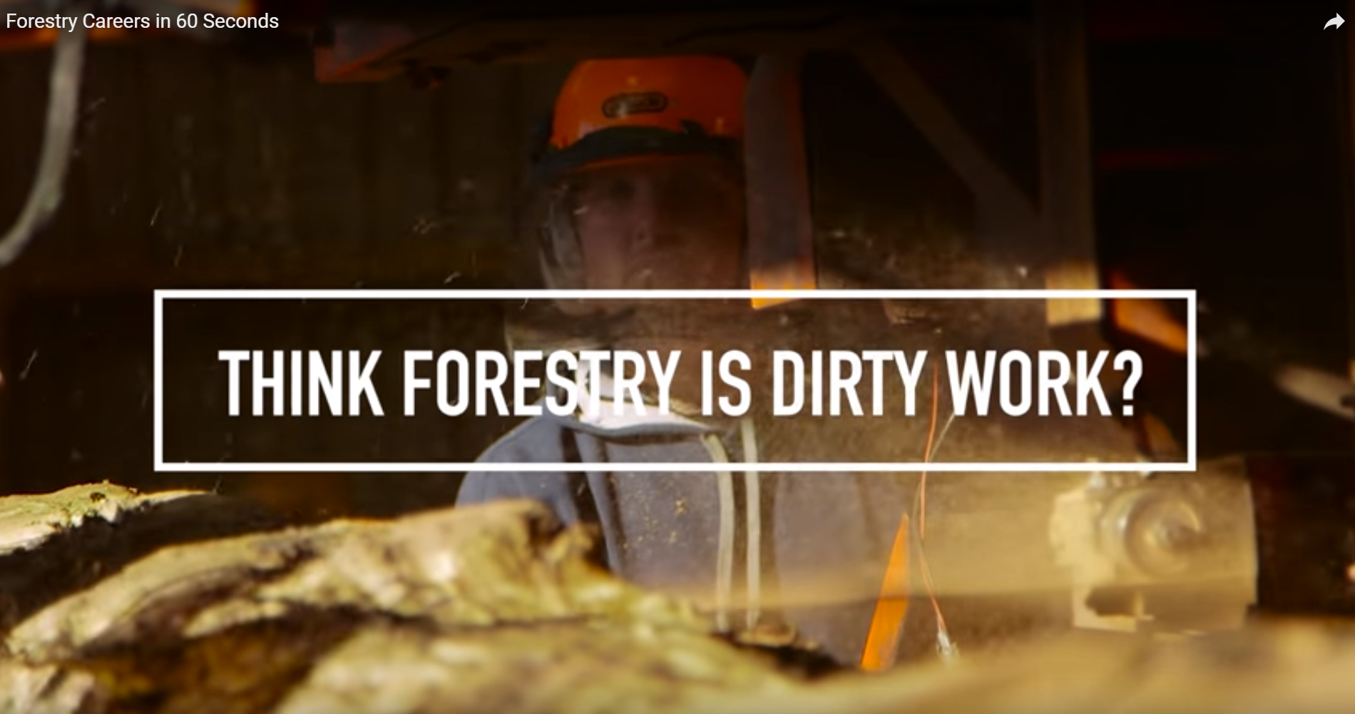 Still from ICF forestry careers video