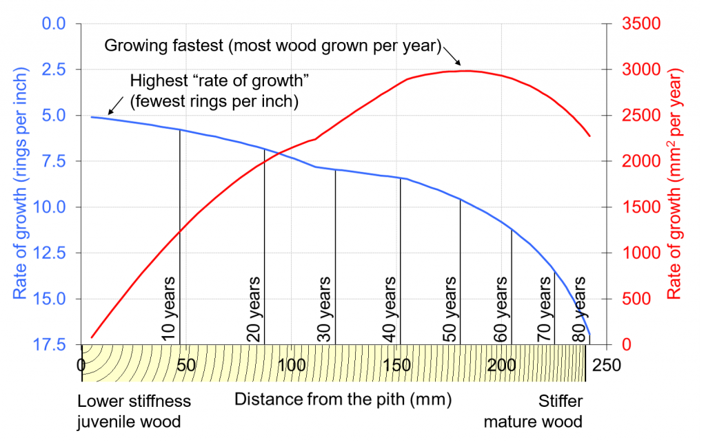 An illustration based on our data from research on 83 year old Sitka spruce from Kielder Forest