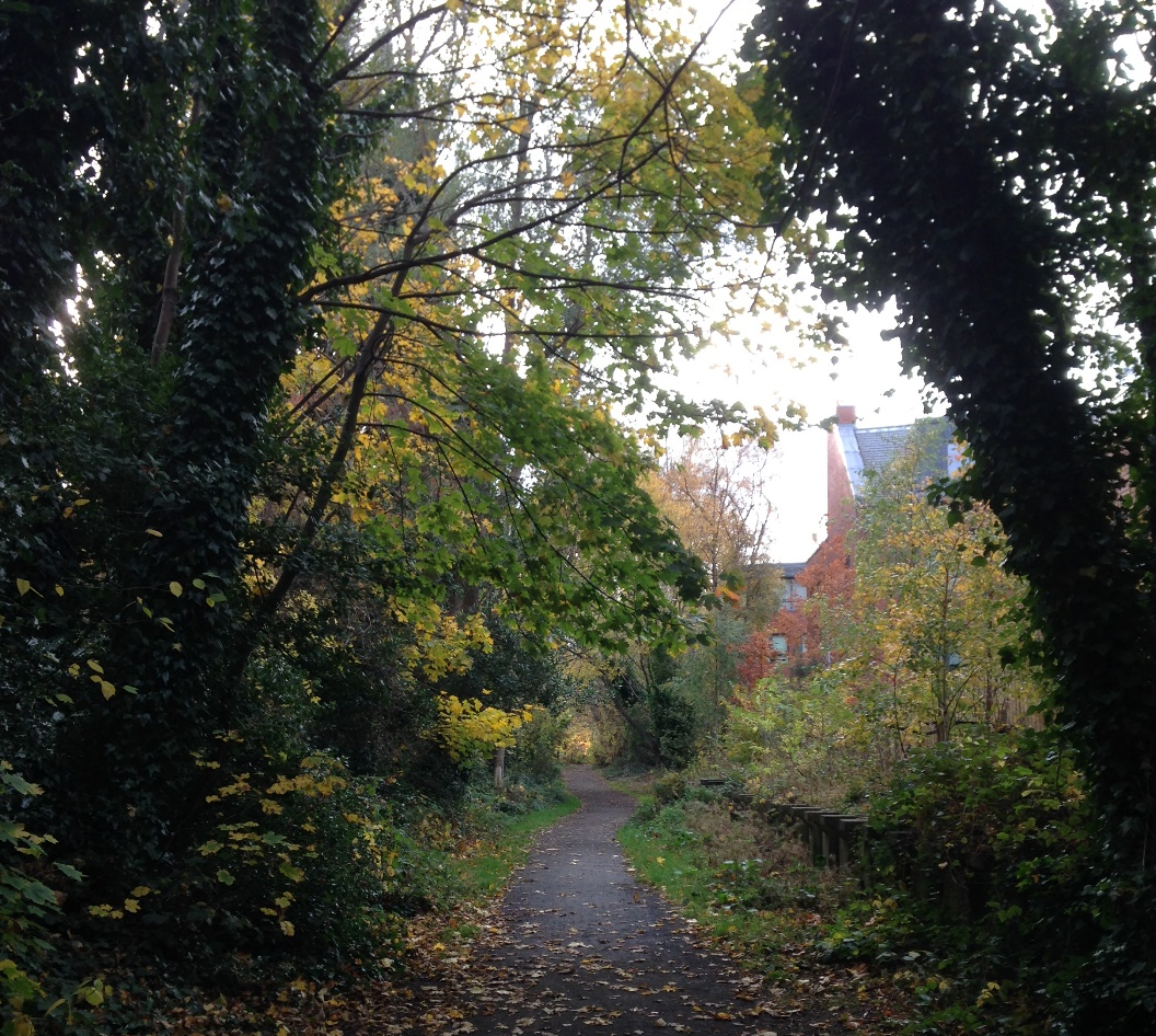 Old Network Railway Path with fallen autumn leaves covering the path