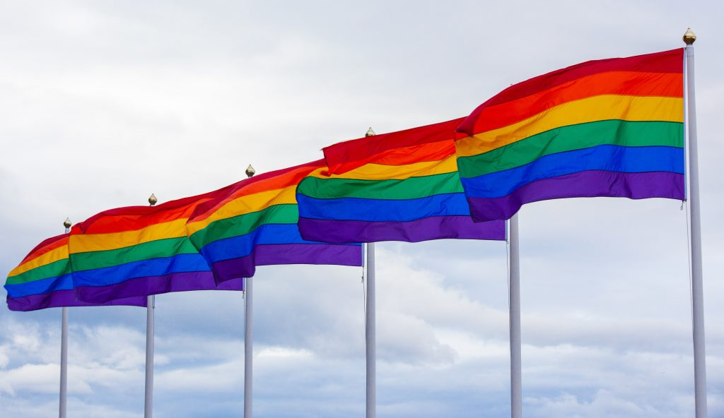 Pride Flags for Pride 2021