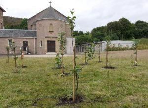 Orchard, Chapel Lion's Gate Garden
